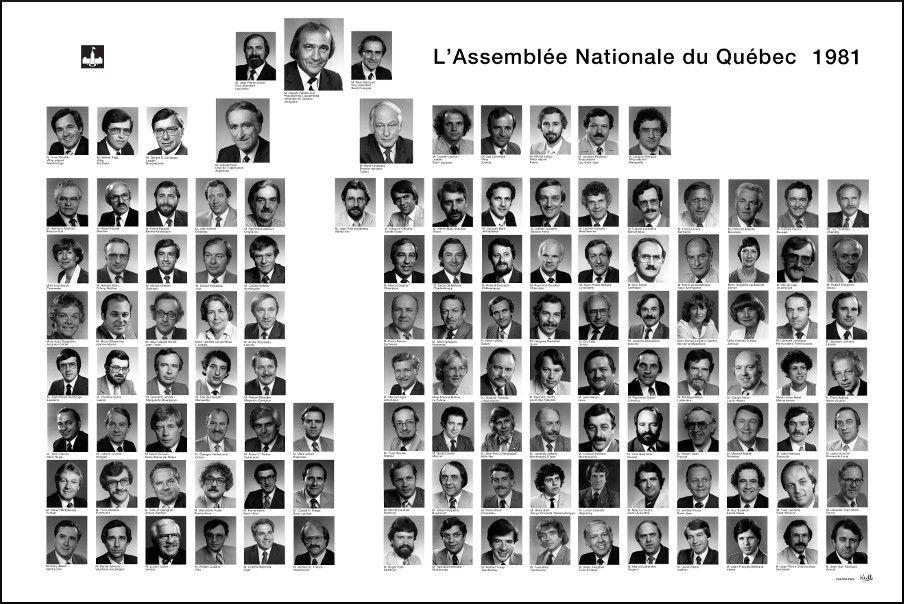 Mosaïque des parlementaires de 1981.